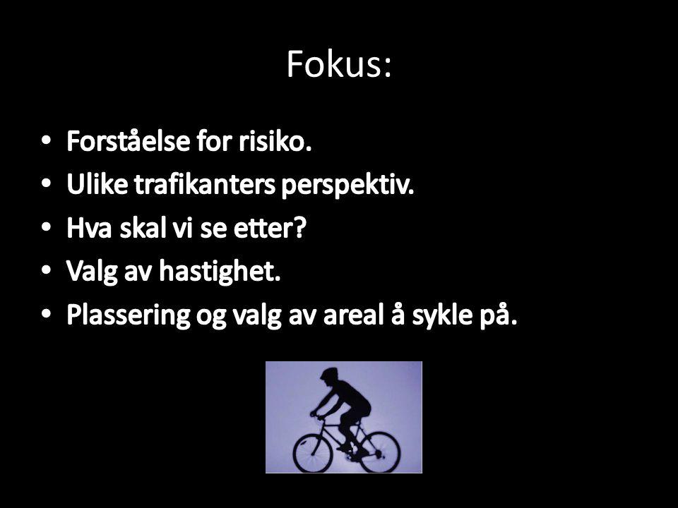 Fokus: Forståelse for risiko. Ulike trafikanters perspektiv.