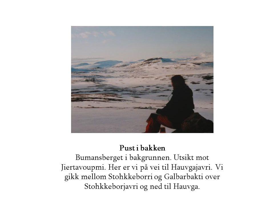 Pust i bakken Bumansberget i bakgrunnen. Utsikt mot Jiertavoupmi
