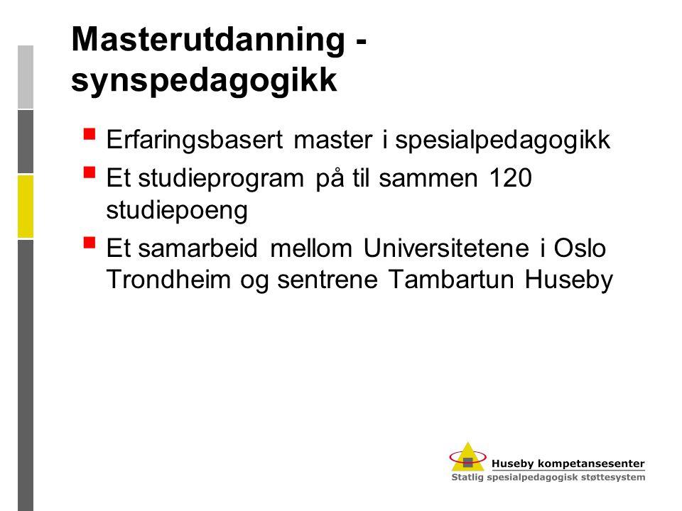 Masterutdanning - synspedagogikk