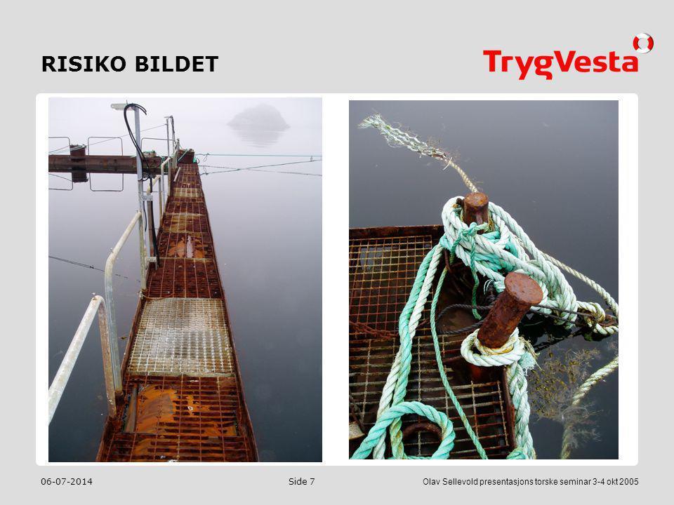 RISIKO BILDET 04-04-2017 Olav Sellevold presentasjons torske seminar 3-4 okt 2005