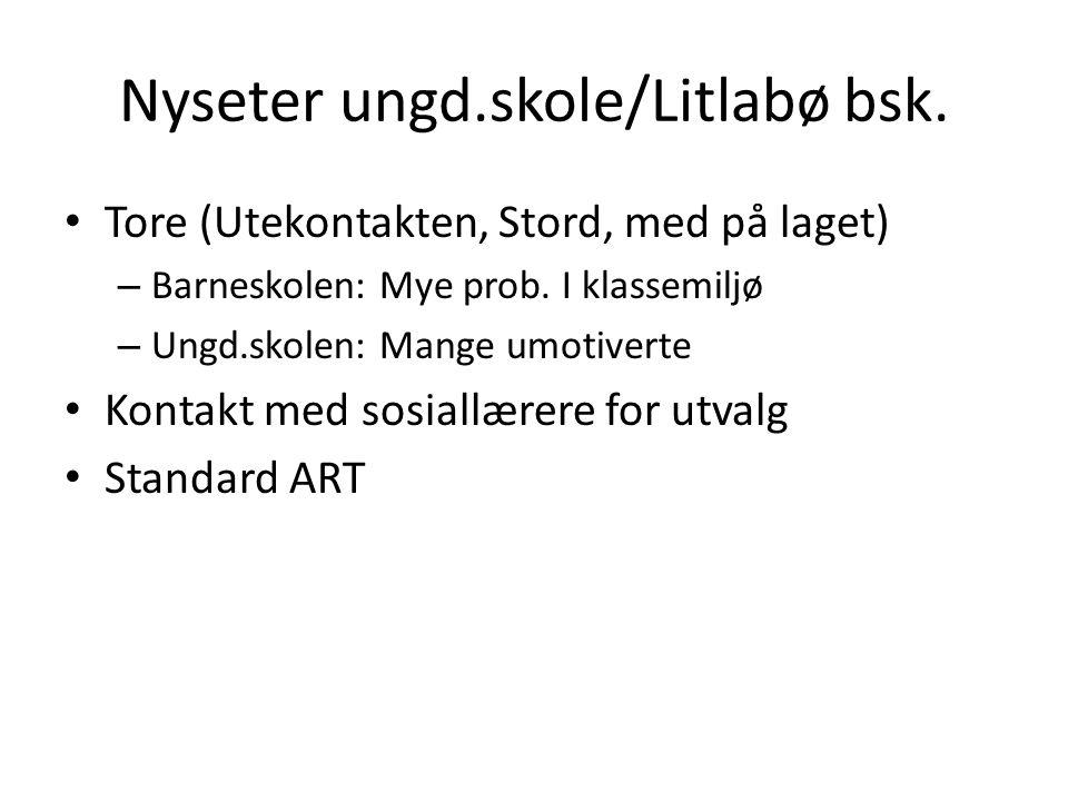 Nyseter ungd.skole/Litlabø bsk.