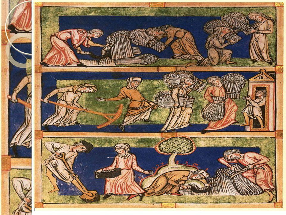 1000-tallet: Landbruket i vekst