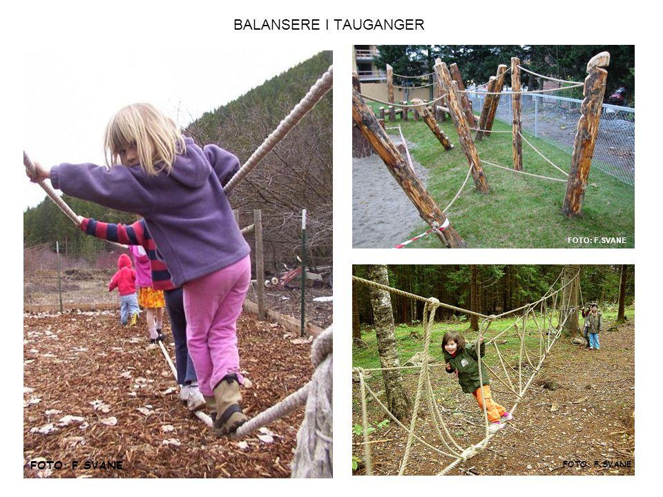 BALANSERE I TAUGANGER FOTO: F.SVANE FOTO: F.SVANE FOTO: F.SVANE