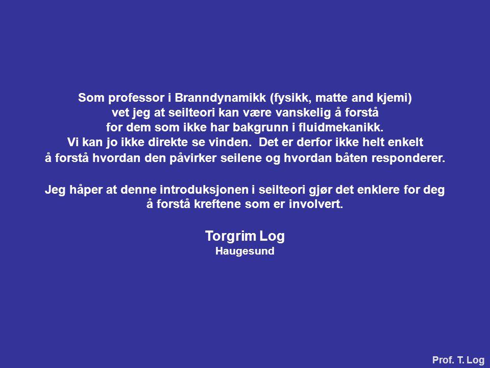 Torgrim Log Som professor i Branndynamikk (fysikk, matte and kjemi)