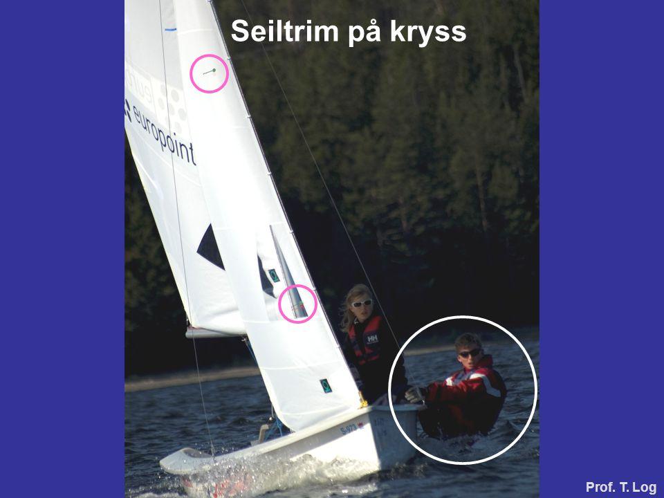 Seiltrim på kryss Prof. T. Log