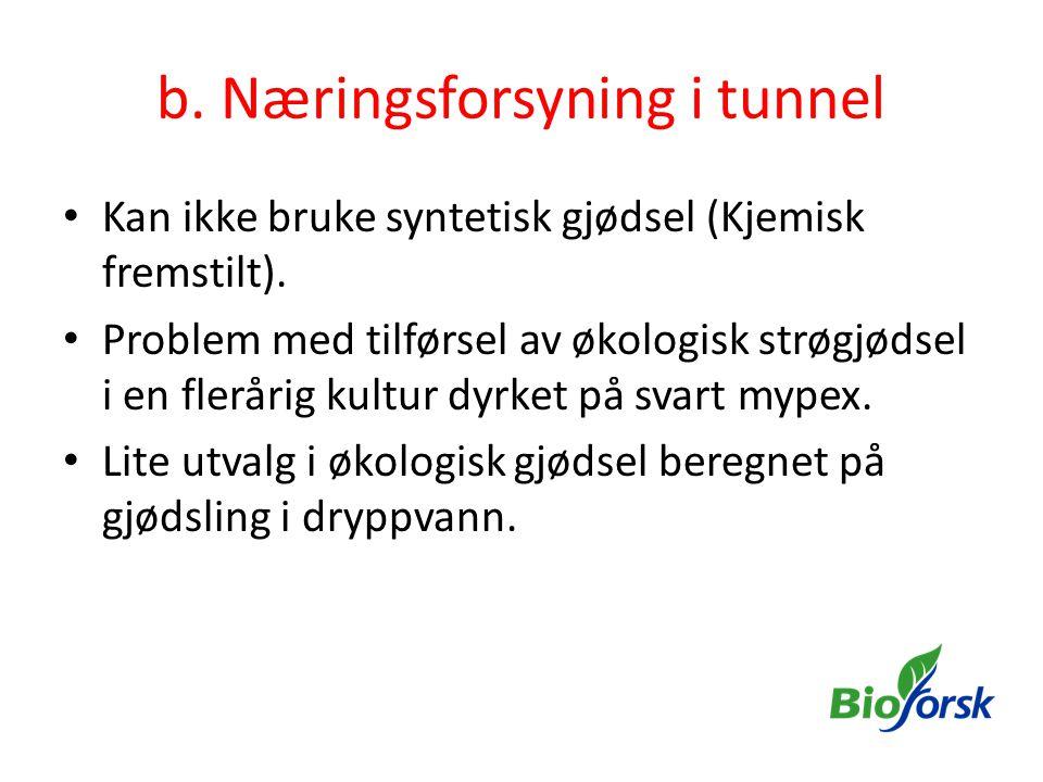 b. Næringsforsyning i tunnel
