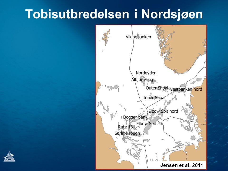 Tobisutbredelsen i Nordsjøen