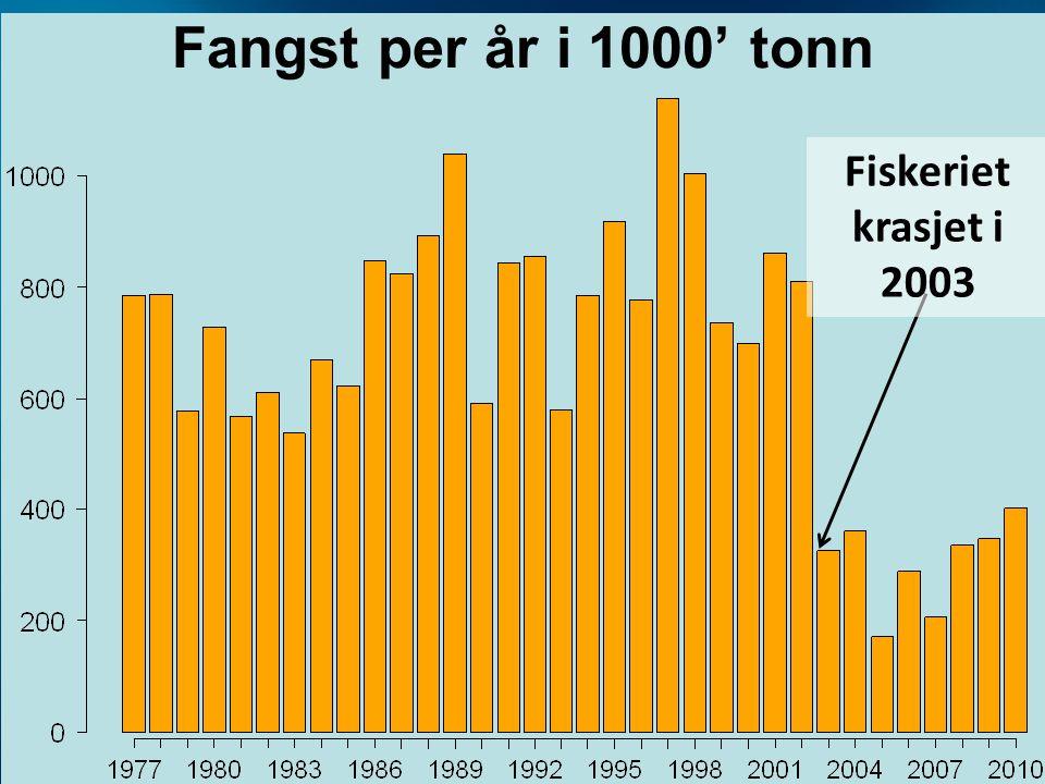 Fangst per år i 1000' tonn Fiskeriet krasjet i 2003