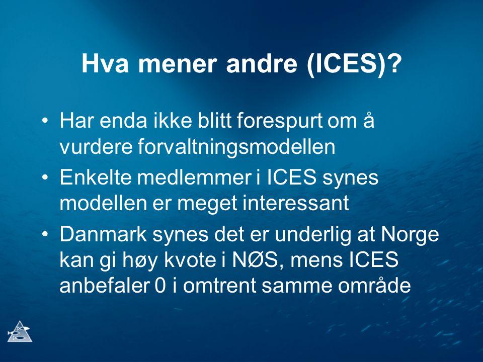 Hva mener andre (ICES) Har enda ikke blitt forespurt om å vurdere forvaltningsmodellen.