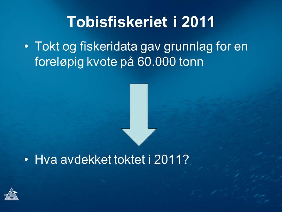 Tobisfiskeriet i 2011 Tokt og fiskeridata gav grunnlag for en foreløpig kvote på 60.000 tonn.