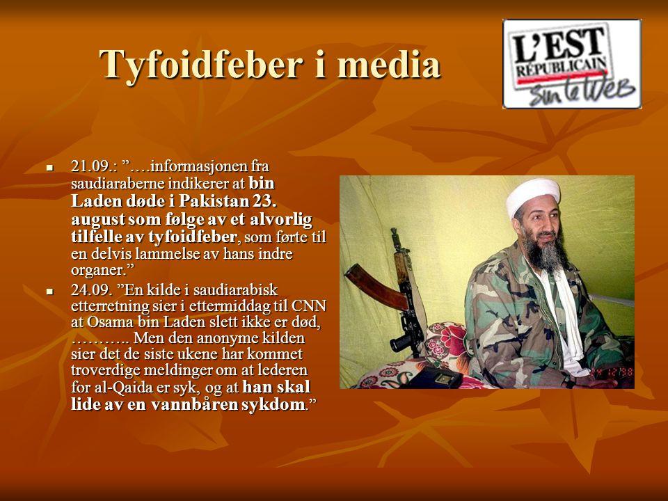 Tyfoidfeber i media