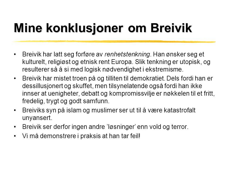 Mine konklusjoner om Breivik