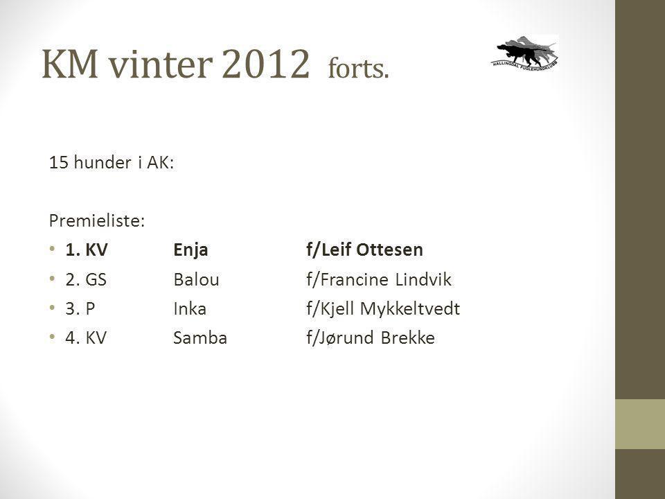 KM vinter 2012 forts. 15 hunder i AK: Premieliste: