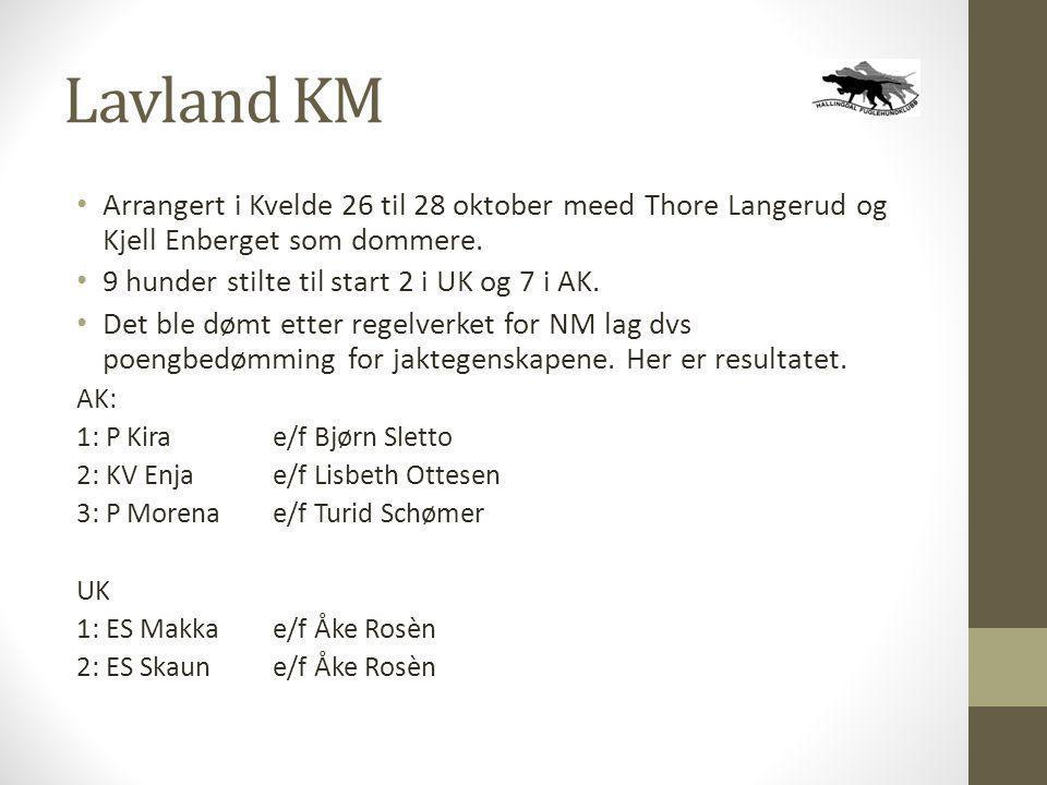 Lavland KM Arrangert i Kvelde 26 til 28 oktober meed Thore Langerud og Kjell Enberget som dommere. 9 hunder stilte til start 2 i UK og 7 i AK.