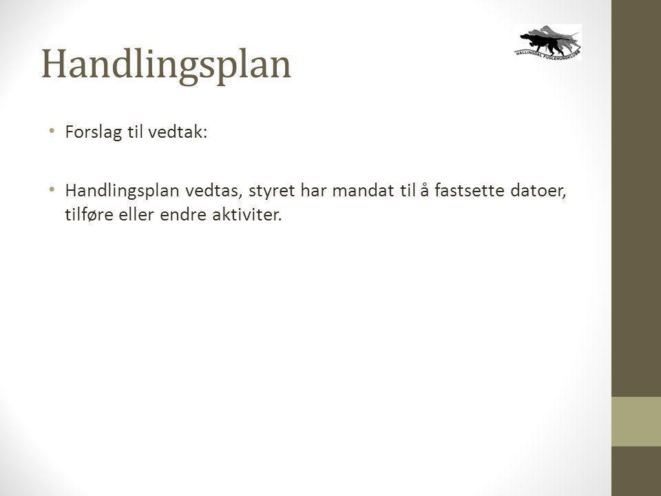 Handlingsplan Forslag til vedtak: