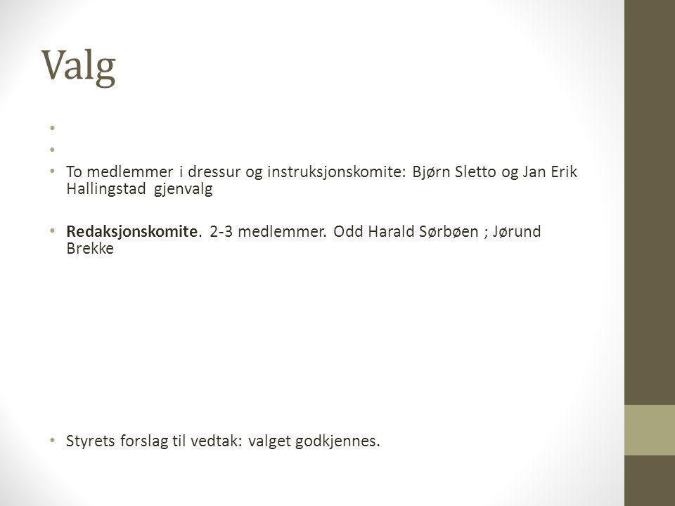 Valg To medlemmer i dressur og instruksjonskomite: Bjørn Sletto og Jan Erik Hallingstad gjenvalg.