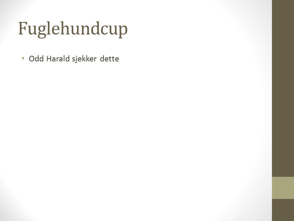 Fuglehundcup Odd Harald sjekker dette