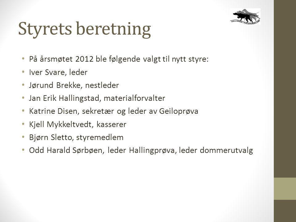 Styrets beretning På årsmøtet 2012 ble følgende valgt til nytt styre: