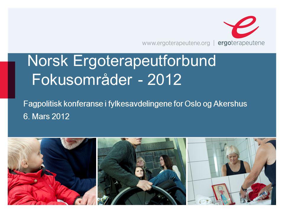 Norsk Ergoterapeutforbund Fokusområder - 2012