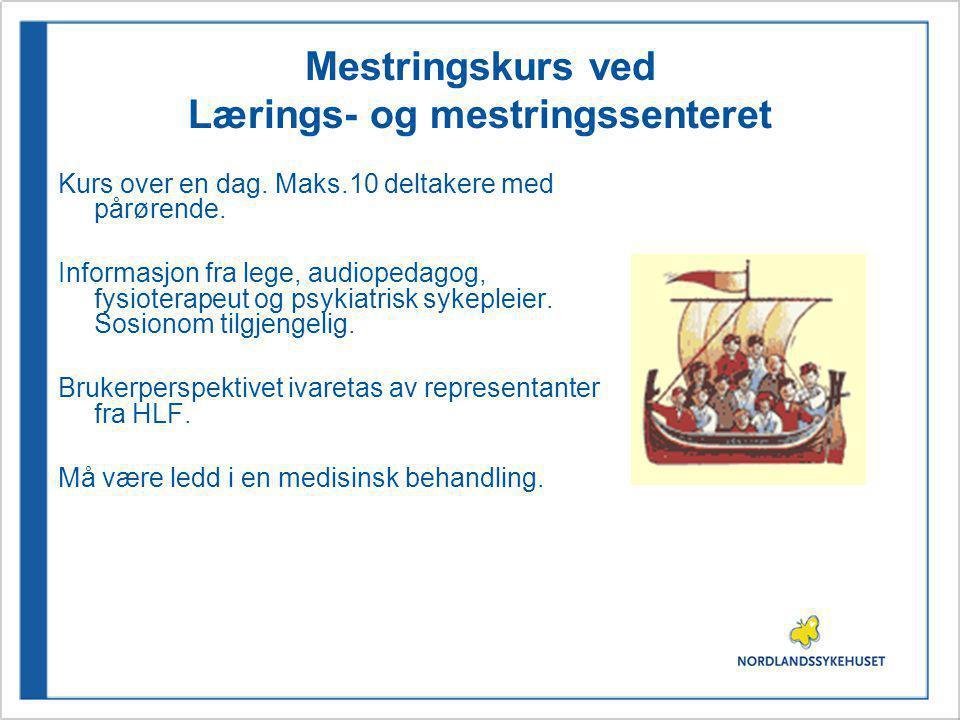 Mestringskurs ved Lærings- og mestringssenteret
