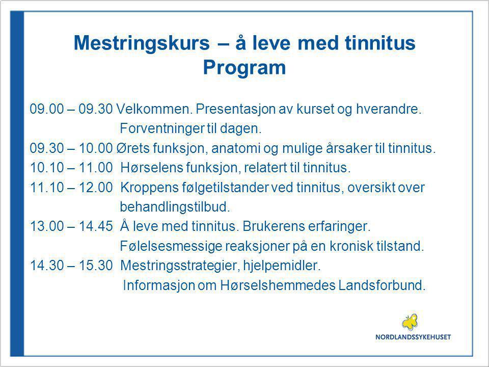 Mestringskurs – å leve med tinnitus Program