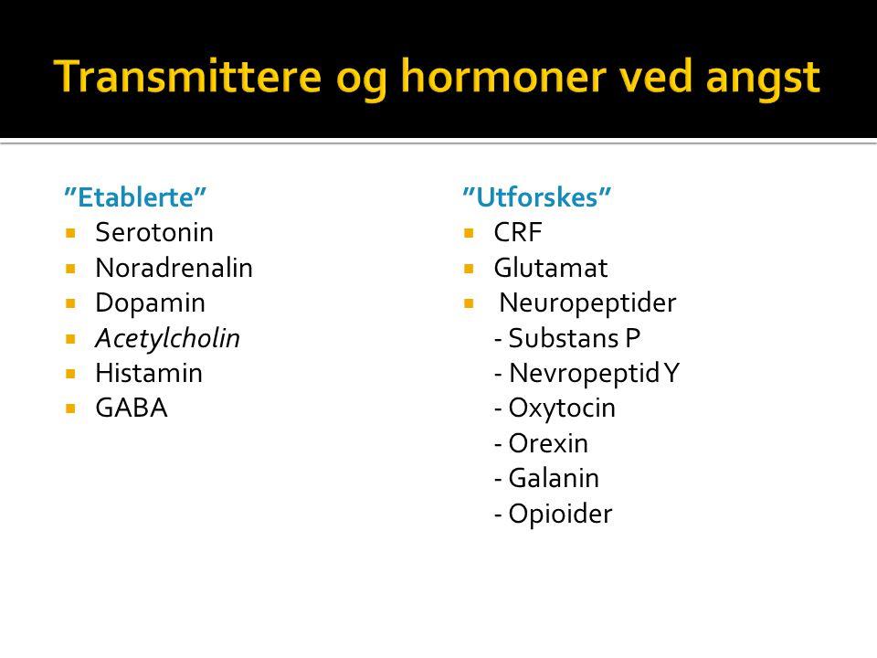 Transmittere og hormoner ved angst