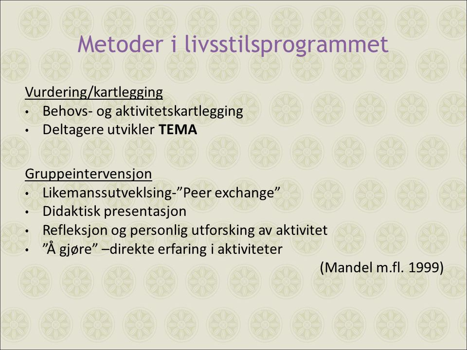 Metoder i livsstilsprogrammet