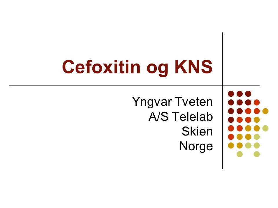 Yngvar Tveten A/S Telelab Skien Norge