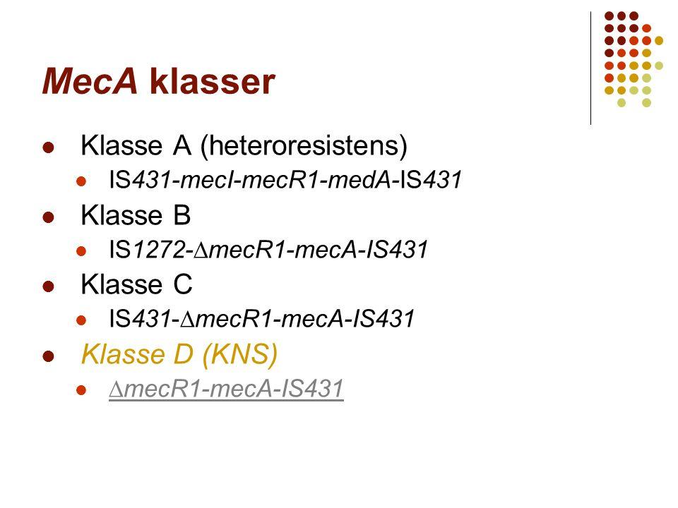 MecA klasser Klasse A (heteroresistens) Klasse B Klasse C