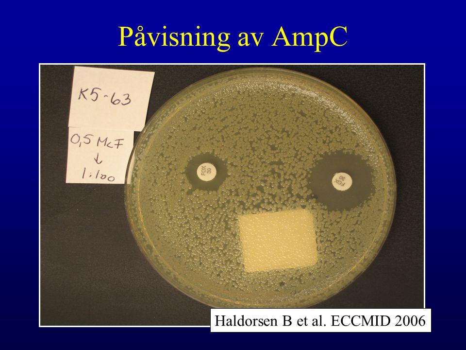 Påvisning av AmpC Haldorsen B et al. ECCMID 2006