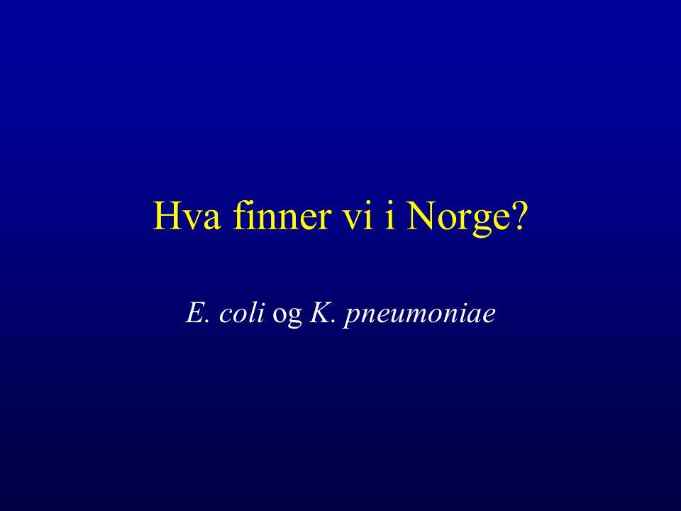Hva finner vi i Norge E. coli og K. pneumoniae