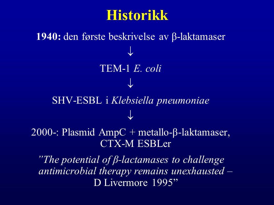 Historikk 1940: den første beskrivelse av β-laktamaser  TEM-1 E. coli