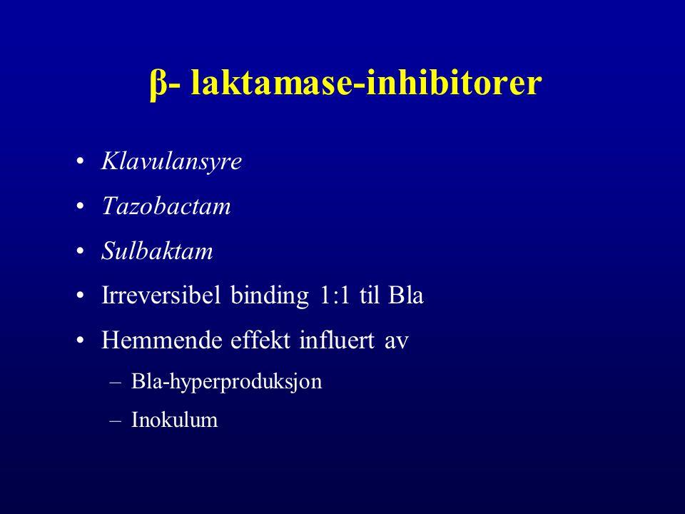 β- laktamase-inhibitorer