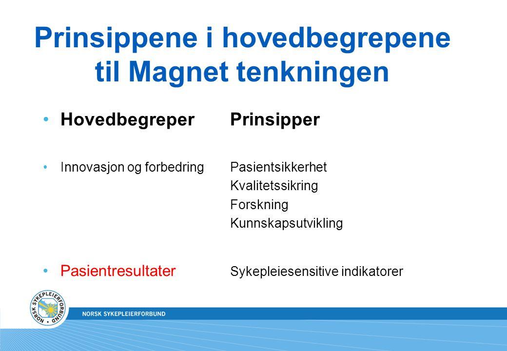 Prinsippene i hovedbegrepene til Magnet tenkningen