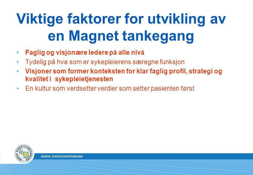 Viktige faktorer for utvikling av en Magnet tankegang