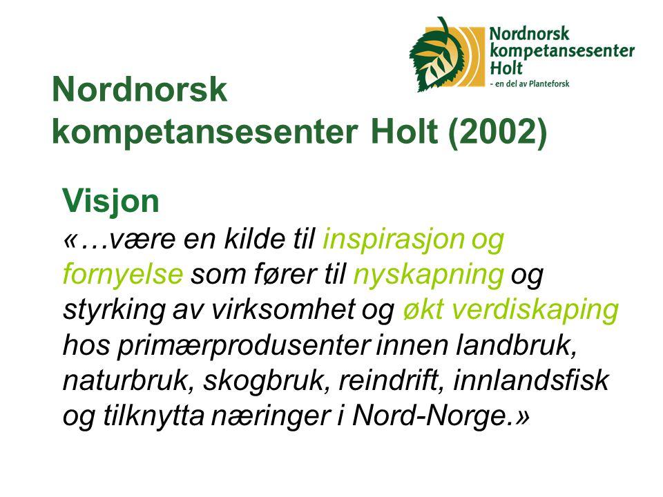Nordnorsk kompetansesenter Holt (2002)