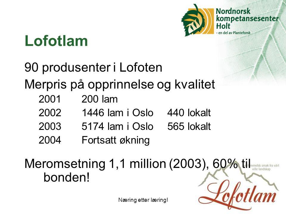 Lofotlam 90 produsenter i Lofoten Merpris på opprinnelse og kvalitet