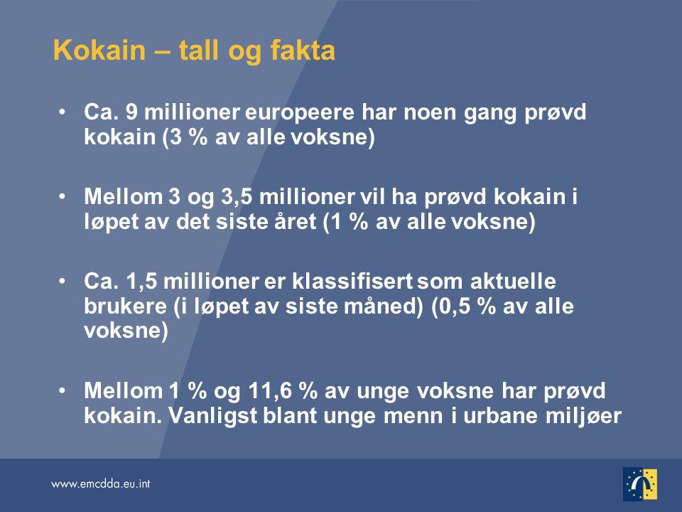 Kokain – tall og fakta Ca. 9 millioner europeere har noen gang prøvd kokain (3 % av alle voksne)