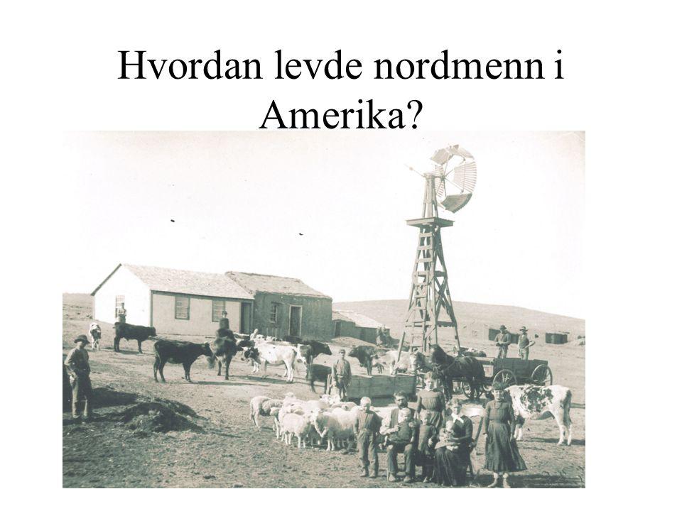 Hvordan levde nordmenn i Amerika