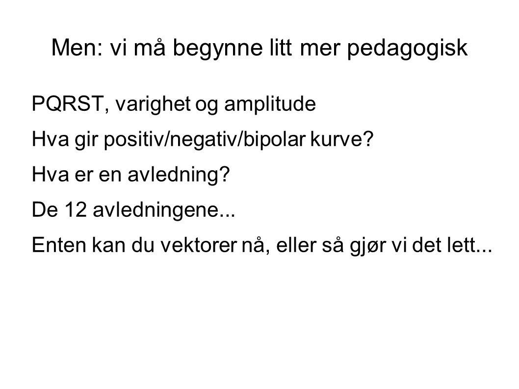 Men: vi må begynne litt mer pedagogisk