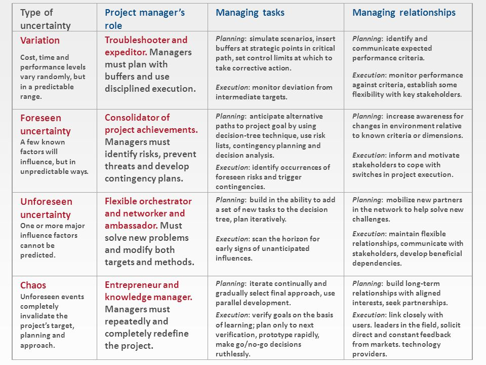 Project manager's role Managing tasks Managing relationships