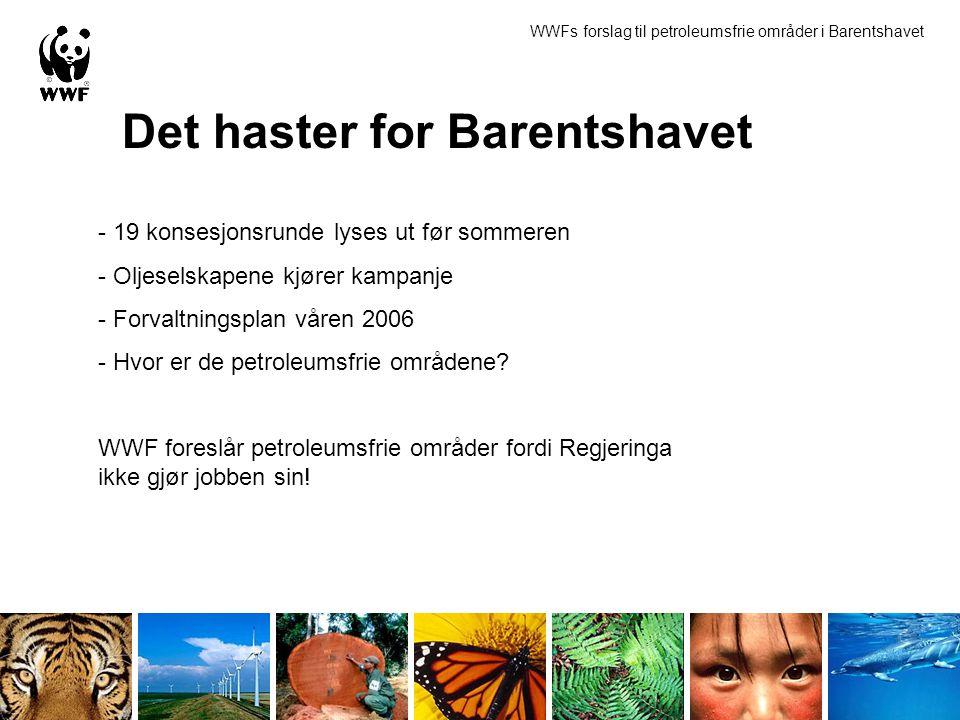 Det haster for Barentshavet