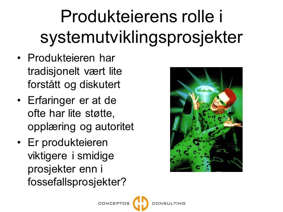 Produkteierens rolle i systemutviklingsprosjekter