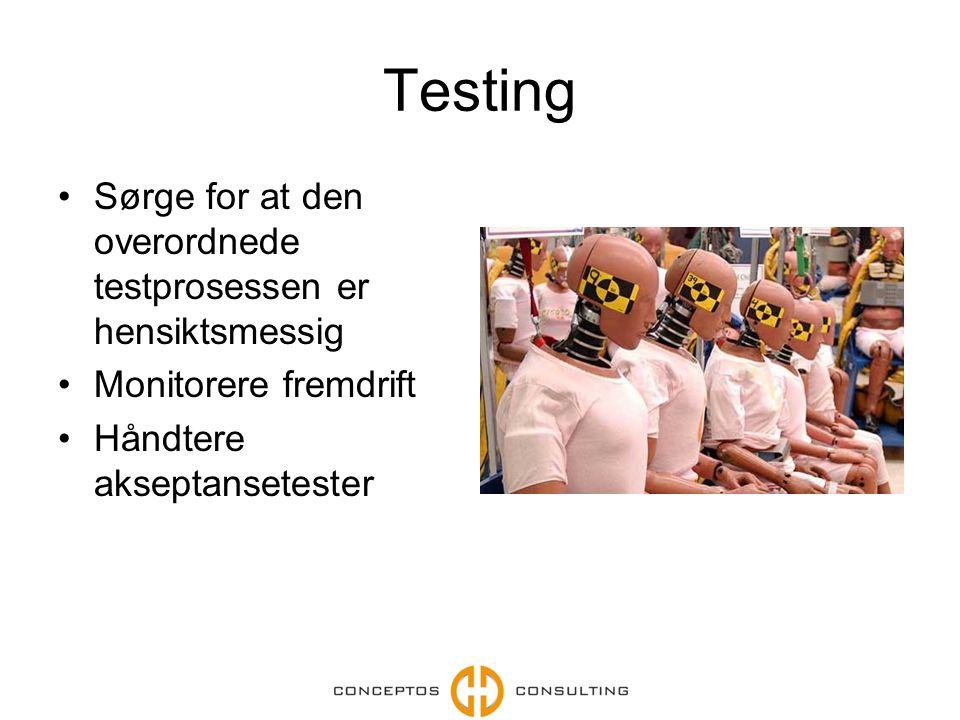 Testing Sørge for at den overordnede testprosessen er hensiktsmessig