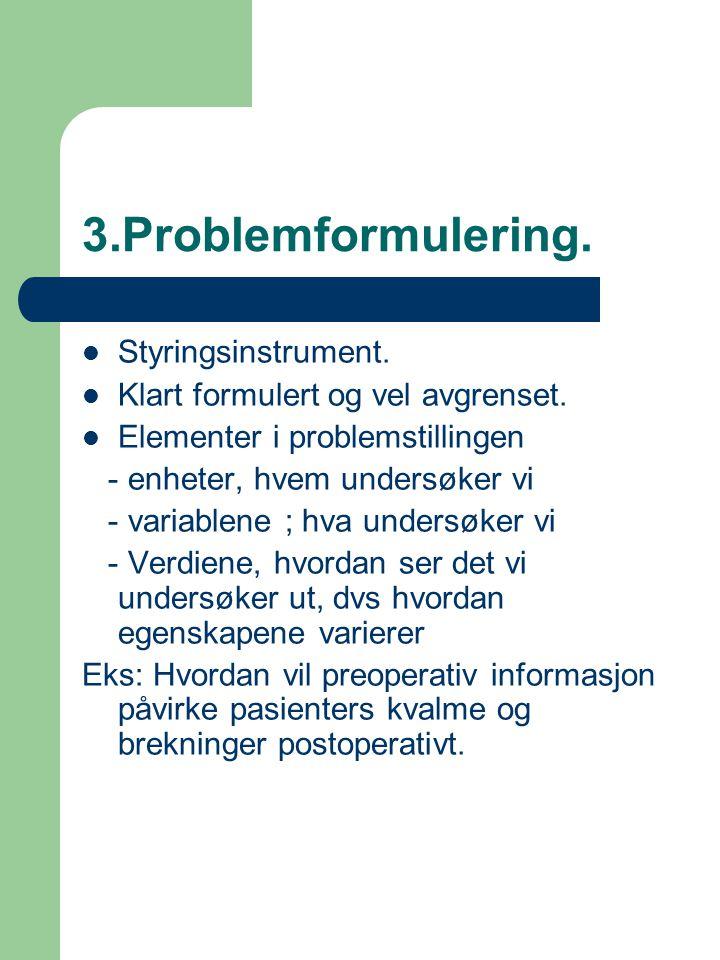 3.Problemformulering. Styringsinstrument.