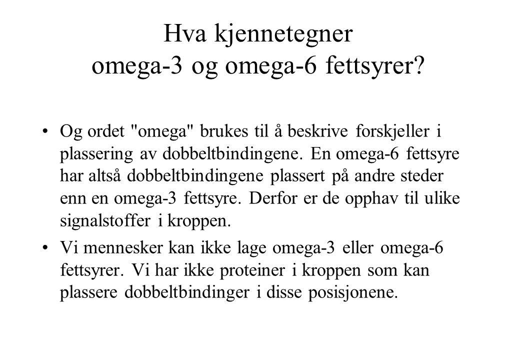 Hva kjennetegner omega-3 og omega-6 fettsyrer