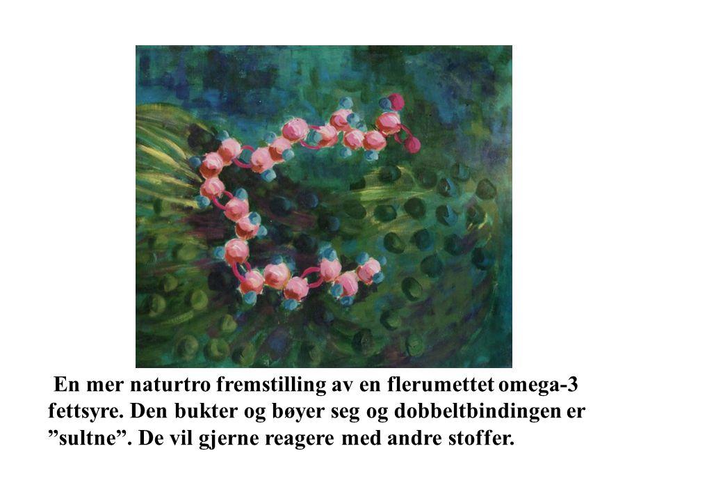 En mer naturtro fremstilling av en flerumettet omega-3 fettsyre