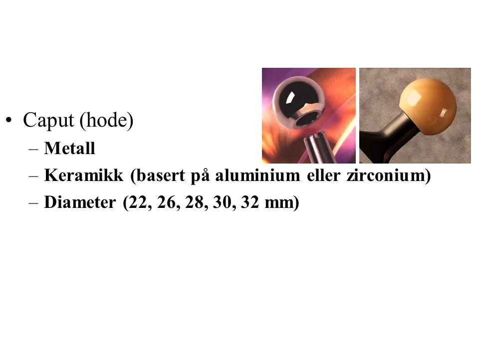 Caput (hode) Metall Keramikk (basert på aluminium eller zirconium)