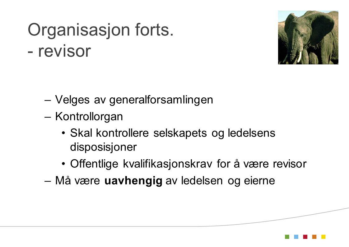 Organisasjon forts. - revisor