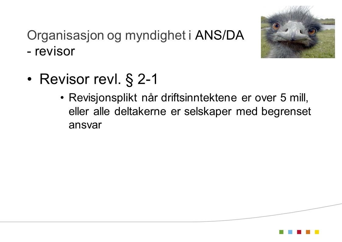 Organisasjon og myndighet i ANS/DA - revisor